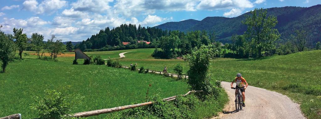 Slovenia biciOK