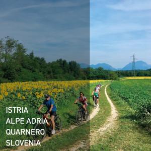 viaggi itineranti in biciOK